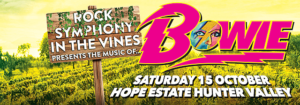 ROCK SYMPHONY IN THE VINES PRESENTS THE MUSIC OF... BOWIE